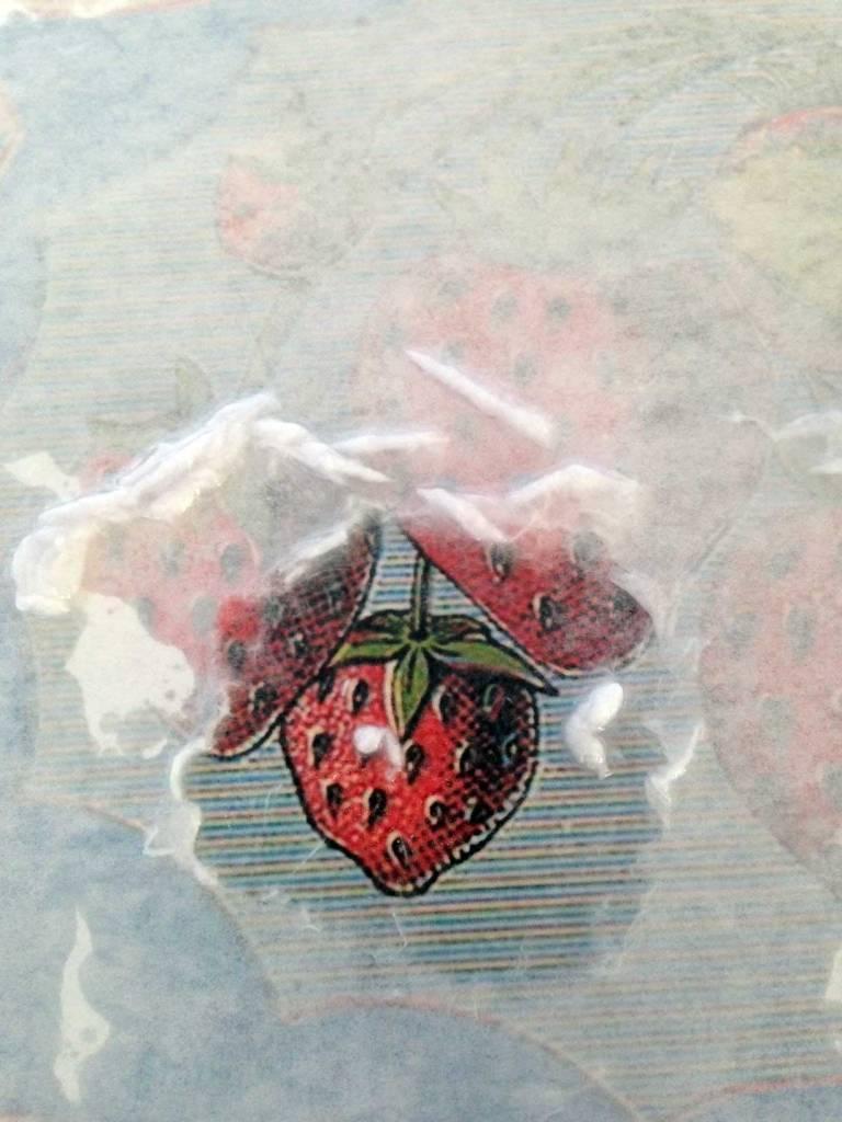 erdbeere13_5